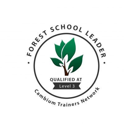 Level 3 FS Logo